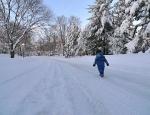 Snowmageddon 2010 - 42