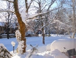 Snowmageddon 2010 - 50