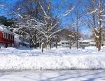 Snowmageddon 2010 - 70