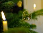 Weihnachten2010 (1 of 31)