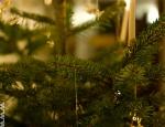 Weihnachten2010 (31 of 31)